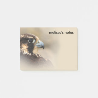 Vignetted Profile of a Peregrine Falcon Post-it Notes