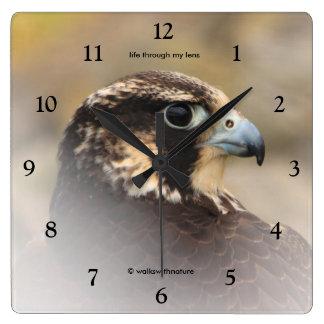 Vignetted Profile of a Peregrine Falcon Square Wall Clock
