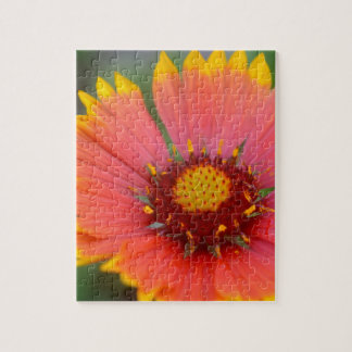 Viibrant Flora Jigsaw Puzzle