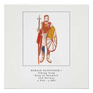 Viking King Harald Bluetooth Poster