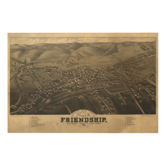 Village of Friendship Allegany Co New York (1882) Wood Canvases