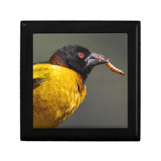 Village Weaver on branch Gift Box