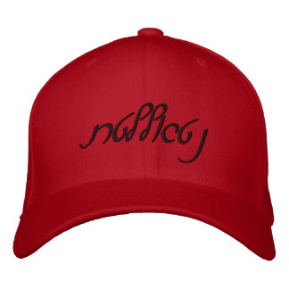 Villain (Modern Hebrew) Fitted Hat Embroidered Hat