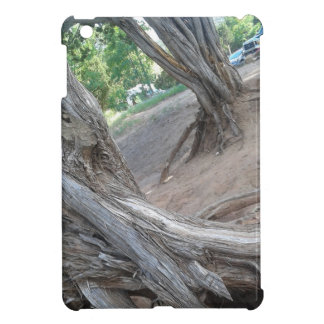 Villanueva State Park iPad Mini Covers