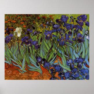 Vincent van Gogh 31 Poster