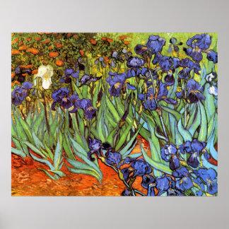 Vincent van Gogh 64 Poster