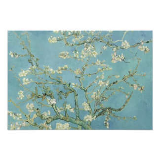 Vincent van Gogh - Almond Blossom Photograph