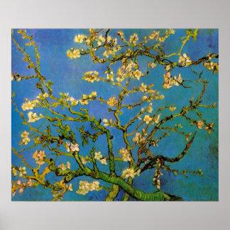 Vincent van Gogh Almond Branch, Post Impressionism Poster