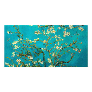 Vincent Van Gogh Blossoming Almond Tree Floral Art Personalized Photo Card