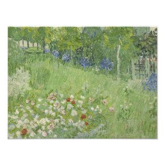 Vincent van Gogh - Daubigny's Garden Photo