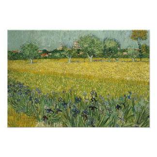 Vincent van Gogh - Field with Flowers Near Arles Photo