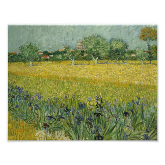 Vincent van Gogh - Field with Flowers Near Arles Photograph