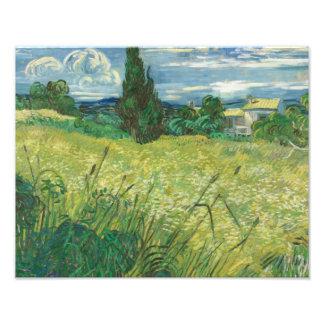 Vincent van Gogh - Green Field Photo Art