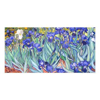 Vincent Van Gogh Irises Floral Vintage Fine Art Photo Card