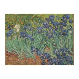 Vincent van Gogh Irises GalleryHD Fine Art Wood Canvas