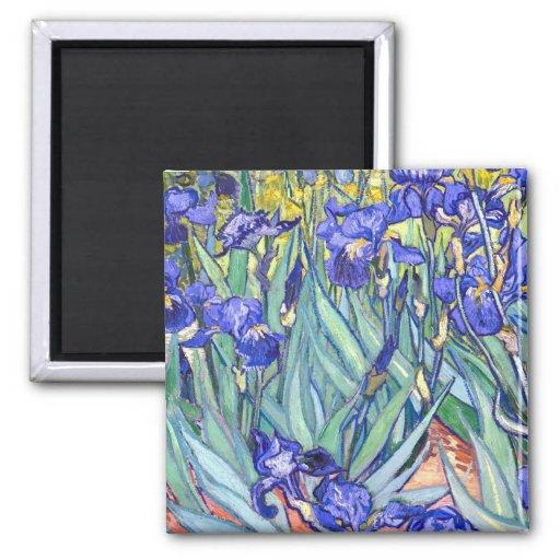 Vincent Van Gogh Irises Magnets