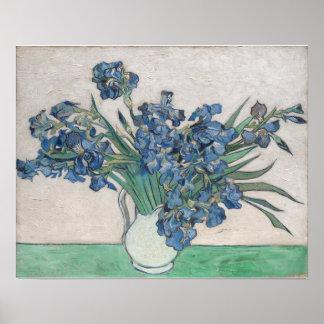 Vincent van Gogh Irises Oil Painting Poster