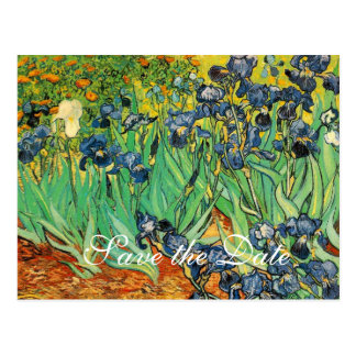 Vincent van Gogh,Irises Postcard