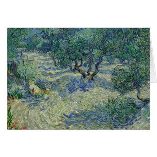 Vincent van Gogh - Olive Orchard Card