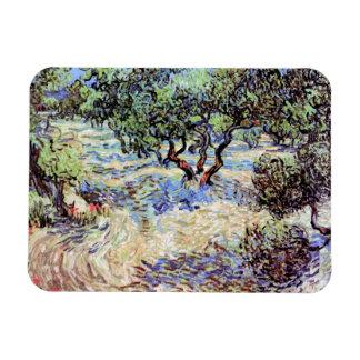 Vincent Van Gogh - Olive Orchard Fine Art Rectangular Photo Magnet