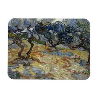 Vincent van Gogh - Olive Trees Rectangular Photo Magnet