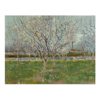 Vincent van Gogh - Orchard in Blossom Postcard