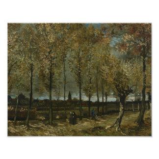 Vincent van Gogh - Poplars near Nuenen Photo Art
