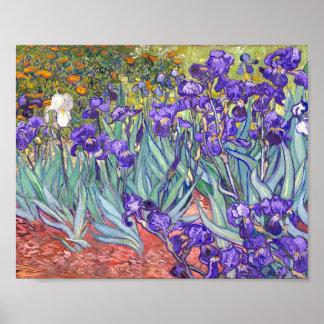 Vincent Van Gogh Purple Irises Fine Art Poster