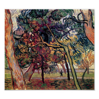 Vincent Van Gogh - Study Of Pine Trees Fine Art Poster