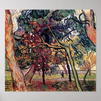 Vincent Van Gogh - Study Of Pine Trees Fine Art Poster