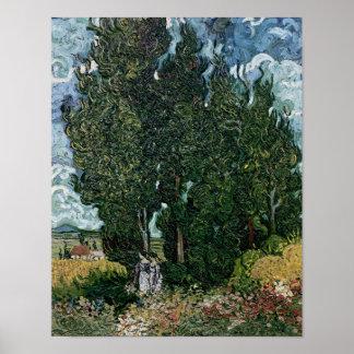 Vincent van Gogh | The cypresses, c.1889-90 Poster