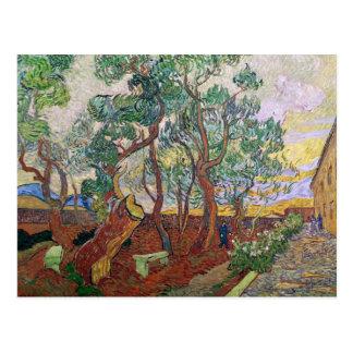 Vincent van Gogh | The Garden of St. Paul Hospital Postcard