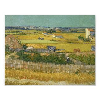 Vincent van Gogh - The Harvest Art Photo