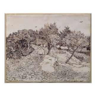 Vincent van Gogh | The Olive Trees Poster