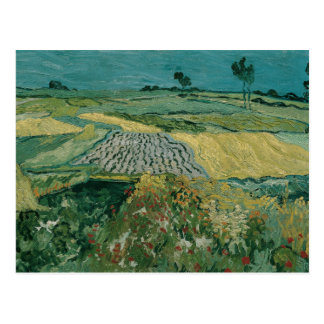 Vincent van Gogh - The Plain of Auvers Postcard