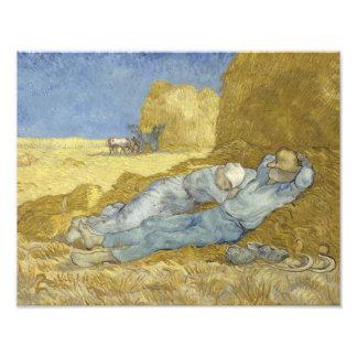 Vincent van Gogh - The Siesta (after Millet) Photograph
