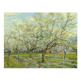 Vincent van Gogh - The White Orchard Postcard