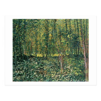 Vincent van Gogh   Trees and Undergrowth, 1887 Postcard
