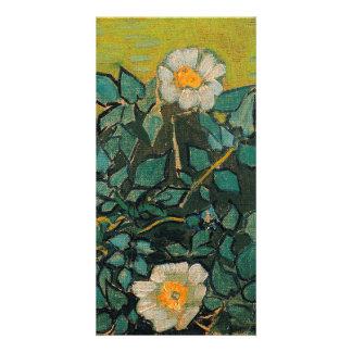 Vincent Van Gogh Wild Roses Vintage Floral Art Photo Cards
