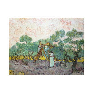 Vincent van Gogh Women Picking Olives Canvas Print