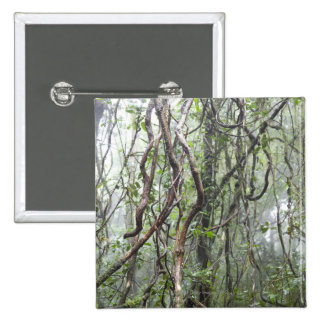 vine and branches twisted in rainforest 15 cm square badge