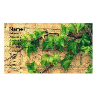 Vine and Brick Pack Of Standard Business Cards