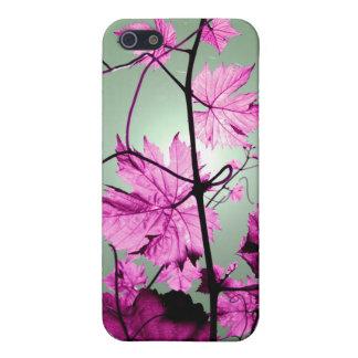 Vine Branch iPhone 5 Cases
