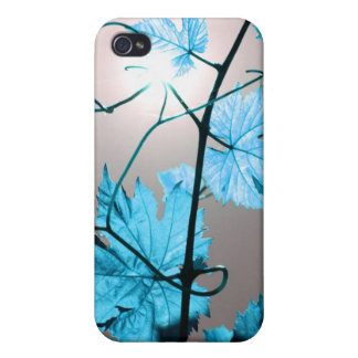 Vine branch iPhone 4/4S covers