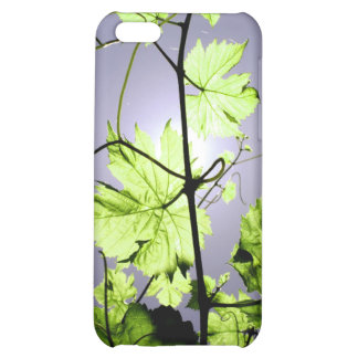 Vine Branch Case For iPhone 5C