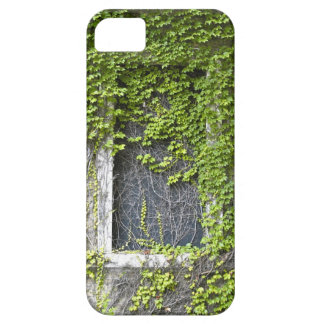 Vine covered building iPhone 5 case