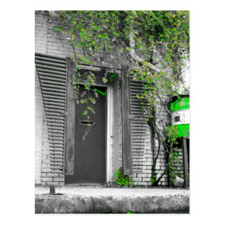 Vine Door Postcard