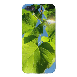Vine Leaves Case For iPhone 5/5S
