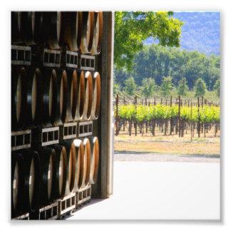 Vines and Barrel Photo Print