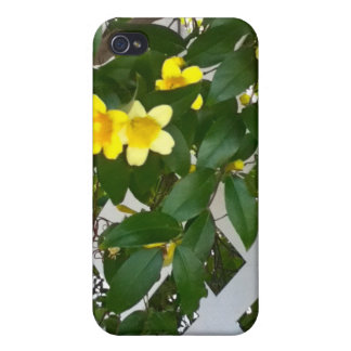 Vines iPhone 4/4S Covers